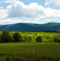vernon valley farm – fields with clouds