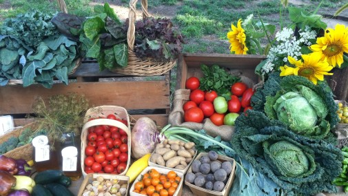 Farmstand Vegetable Selection – Vernon Valley Farm